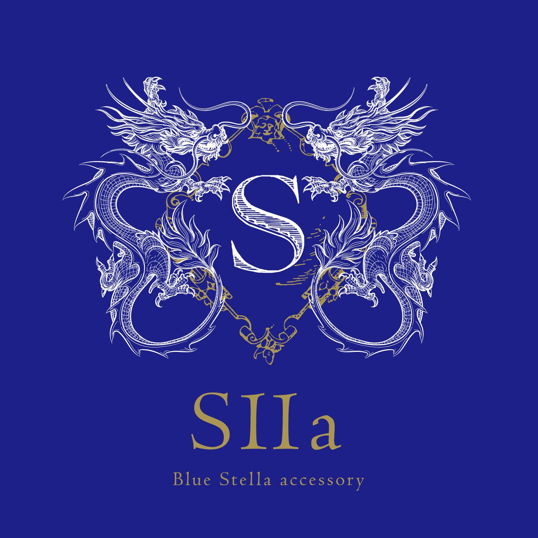 S11a青色中心雑貨